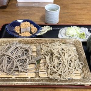 専心庵さんの蕎麦と武田神社
