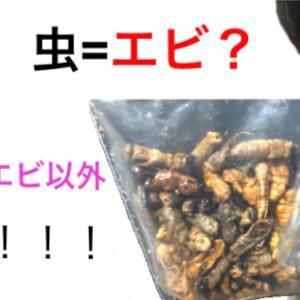 虫の味をエビで例える人多すぎだから意地でもエビ以外で例えてやる。