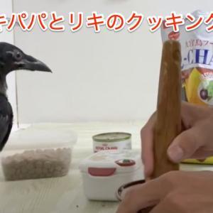カラスフード自作してみた [I made a crow food]