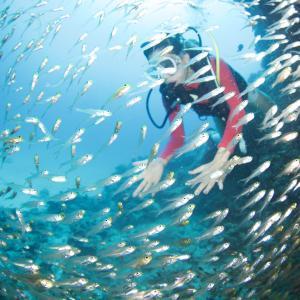 沖縄の海を賑やかにする女性ダイバー!!
