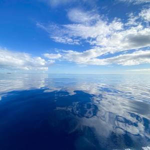 慶良間の手前!チービシ諸島で体験ダイビング