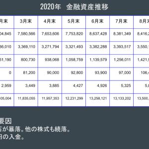 金融資産公開 2020年10月末
