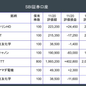 保有株の状況(2020年11月27日時点)