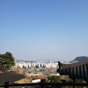 釜山の大学生、今釜山には住んでいない状況