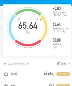 12日目 68.55kg→65.64kg (-2.91kg) 豆もやし