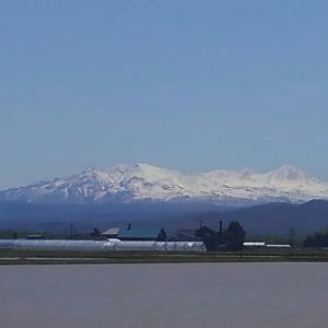 北海道 大雪山をみてみようー