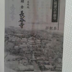 鎌倉へ④長谷寺へ