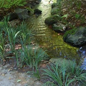 ③円月橋から東門出口へ 小石川後楽園