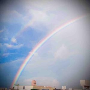 虹が咲いてた