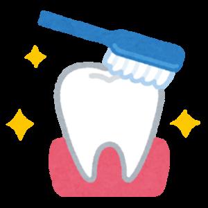 口臭対策・ホワイトニングに効果あり?!爽快なたまめ歯磨き粉 お試ししてみた!