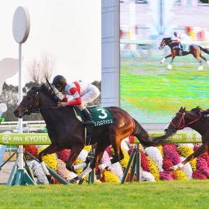 【G3 京阪杯】軸馬情報