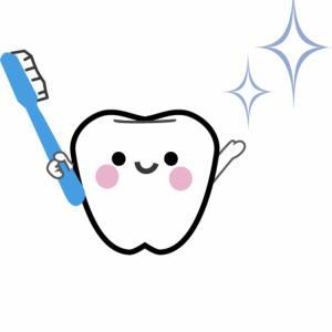歯科検診が妊娠中期に必要な訳