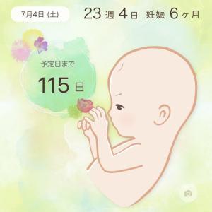 妊娠中期のお腹の痛み