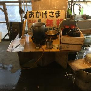 稲取港の朝市@静岡県東伊豆町【きんめ鯛の無料汁】