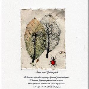 枯葉とオトシブミ