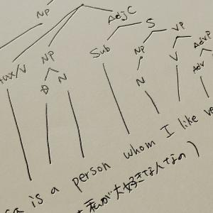 whomの用法解説&樹形図(Syntax Tree Diagram)