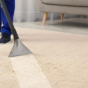 リンサーの威力が凄い!プロ流のカーペットの掃除で他人に差をつける