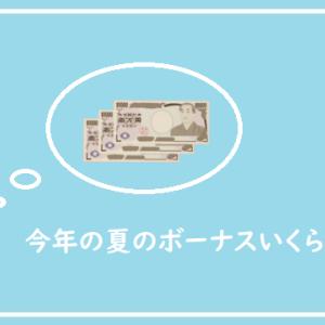 日本という国で、子供3人を育てる夫のボーナス額を公開