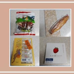 JR博多駅構内のお土産売場マイングで買った九州みやげはこれ!
