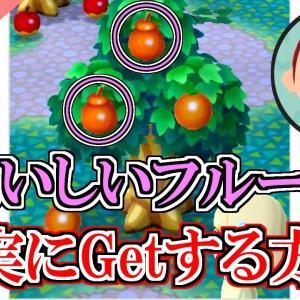 【ポケ森】おいしいフルーツを確実に入手する裏技!【どうぶつの森ポケットキャンプ】