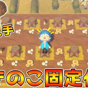 【あつ森】キノコの出現場所を固定化!秋に備えて効率よく収穫する方法!【あつまれどうぶつの森】