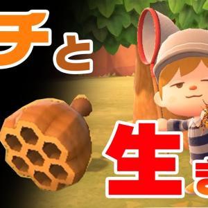 【あつ森】超簡単!ハチ&ハチの巣徹底攻略!
