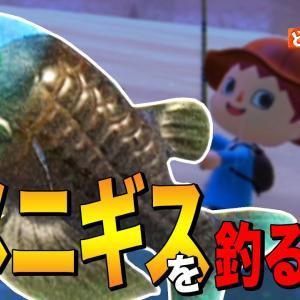 【あつ森】初心者必見!深海の謎「デメニギス」を釣る方法 ~Barreleye~【あつまれ どうぶつの森】