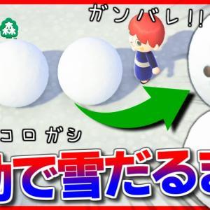【あつ森】フンコロガシに雪だるまを作ってもらいたいんよ!!【あつまれどうぶつの森】