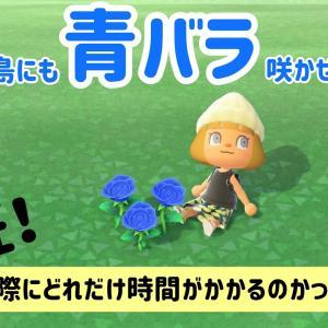 【あつ森】青バラを咲かせてみませんか?