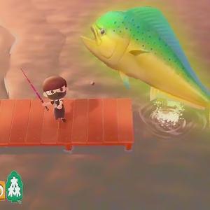 【あつ森】5月のムシとサカナを全て捕まえてみた。 Bugs to Get and Fish to Get in May. 【Animal Crossing: New Horizons】