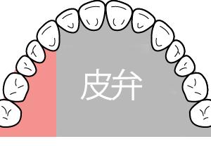 前歯が無い