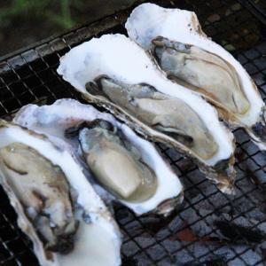 【お取り寄せグルメ】北海道の海鮮は格別です♪