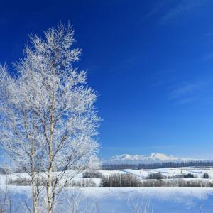 【秋、冬に備える!】最強だったベビーの防寒!