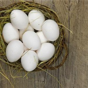 らでぃっしゅぼーやの卵とヨーグルトは最高ですよ★