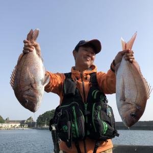 5月の島野浦で真鯛釣り
