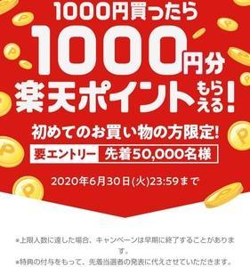初購入で1000円ポイントバックキャンペーン再び