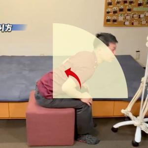 逆流性食道炎 座り方で内臓機能を高めよう