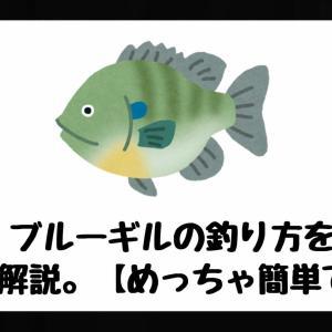 【確定】ブルーギルの釣り方を完全解説。【めっちゃ簡単です。】