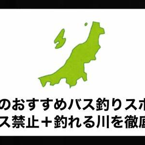 新潟県のおすすめバス釣りスポット!リリース禁止+釣れる川を徹底解説。