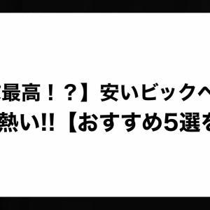 【コスパ最高!?】安いビックベイトが熱い!!【おすすめ5選を紹介】