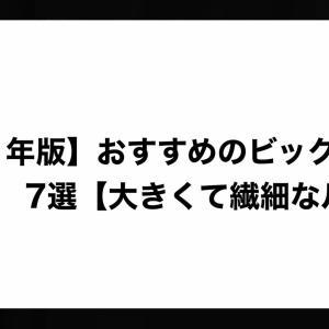 【2021年版】おすすめのビックベイト7選【大きくて繊細なルアー】