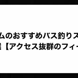 野村ダムのおすすめバス釣りスポット4選【アクセス抜群の】