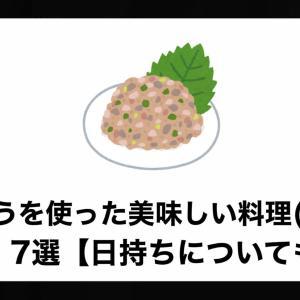なめろうを使った美味しい料理(レシピ)7選【日持ちについても解説】