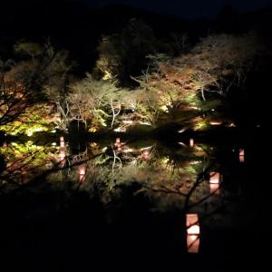 御船山楽園紅葉まつり①