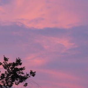 夏の夕方空。