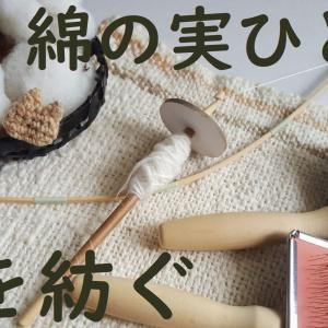 綿の実ひとつから糸を紡ぐ動画と道具付キット