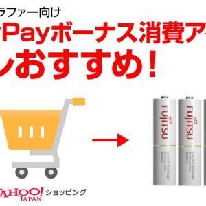 フォトグラファーのPayPayボーナス消費アイテムはコレおすすめ!