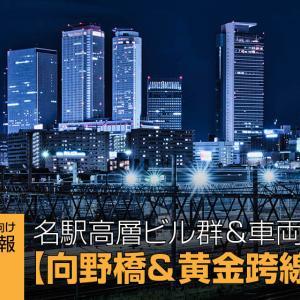 名駅高層ビル群&車両基地 カメラマン向け撮影情報【向野橋&黄金跨線橋】