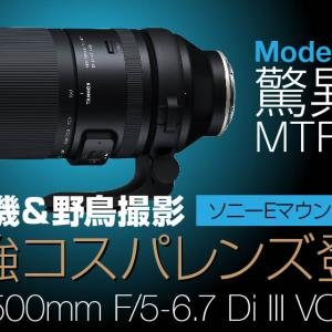150-500mm F/5-6.7 Di III VC VXD航空機&野鳥撮影で性能を引き出す方法