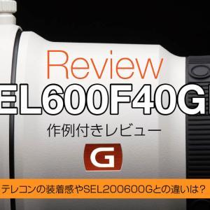SEL600F40GM レビューや作例・テレコン装着やズームと比較